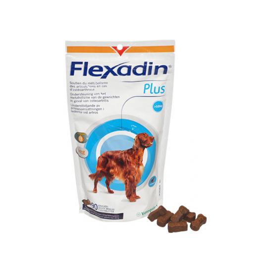 Flexadin Plus Maxi Chein Plus de 10 Kg