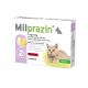 Milprazin vermifuge chatons et petits chats
