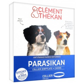 Parasikan Collier Grand Chien