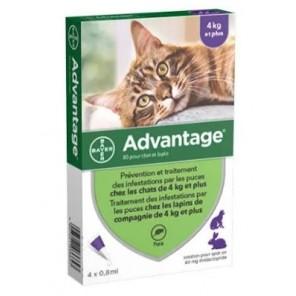 Advantage-80 Chat Lapin Plus 4 Kg 6 pipettes